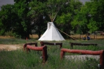 A Shoshone Tepee On The Shoshone Ceremonial Grounds